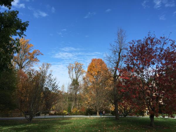 Longwood 公园的四季:秋天