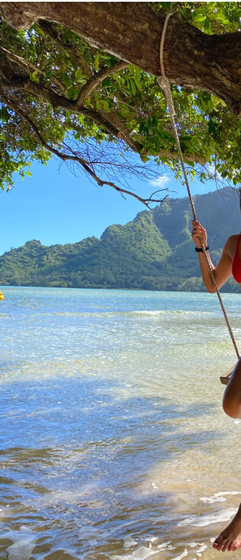 情系夏威夷 17: 鸽子树和网红博主